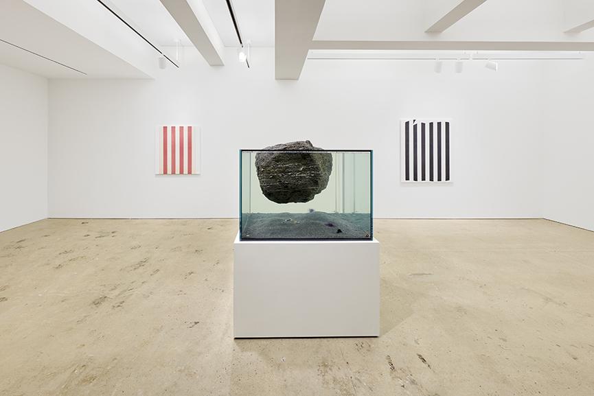 Pierre Huyghe Daniel Buren Nahmad Contemporary 3
