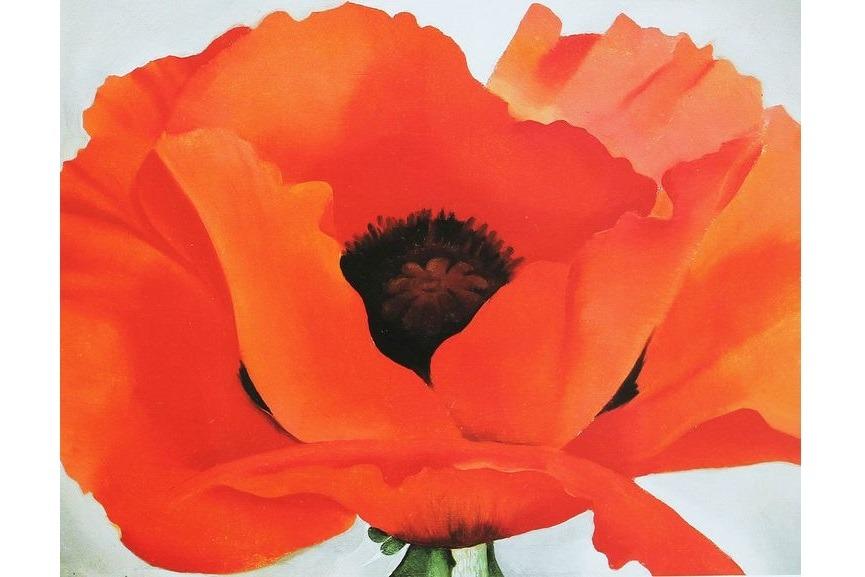 The Most Sensual Georgia O'Keeffe Flowers in Paintings | Widewalls