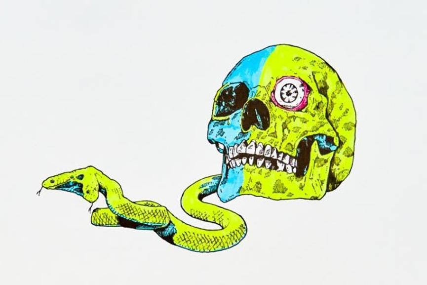 Richard French Sayer - Snake Skull, detail
