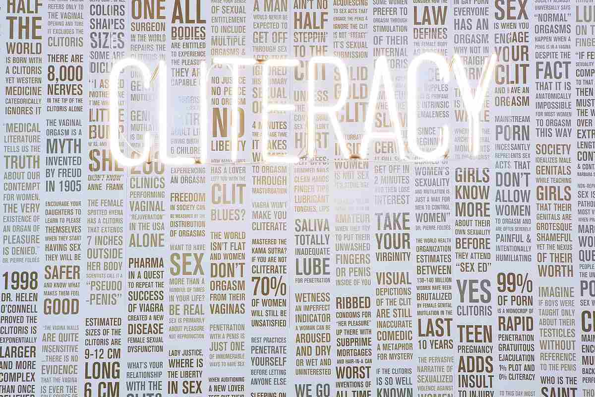 Sophia Wallace - CLITERACY, 100 Natural Laws, 2012. Image via sophiawallace