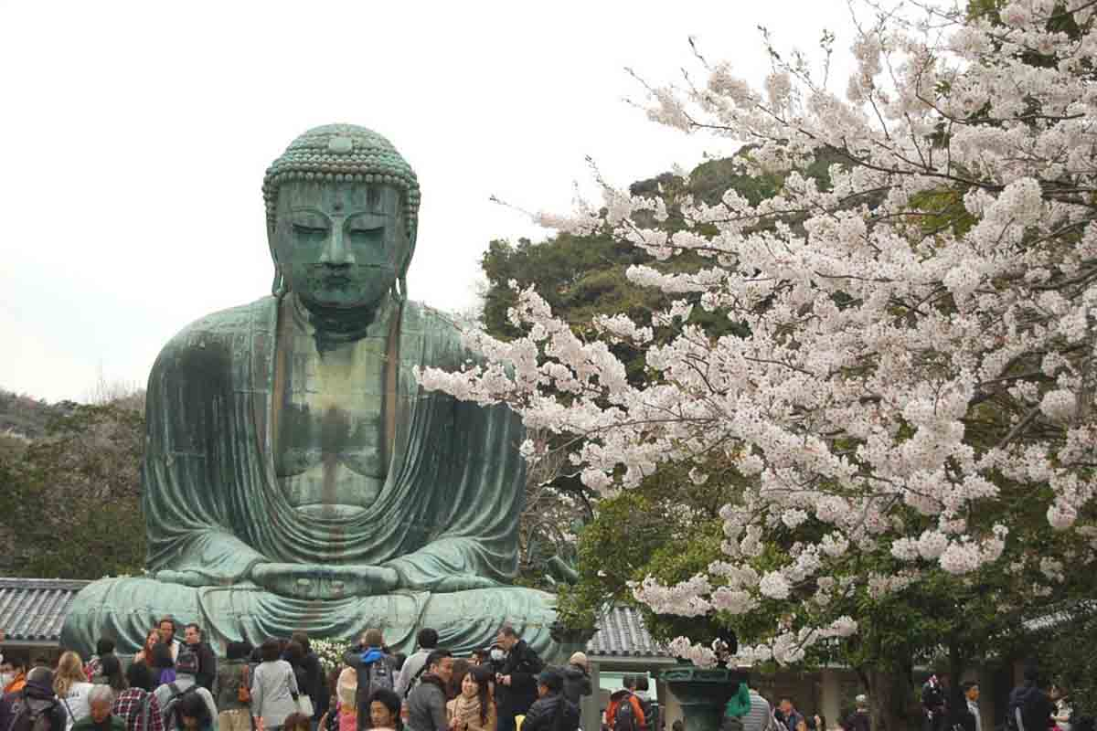 The Big Buddha in Kamakura via onmarkproductions