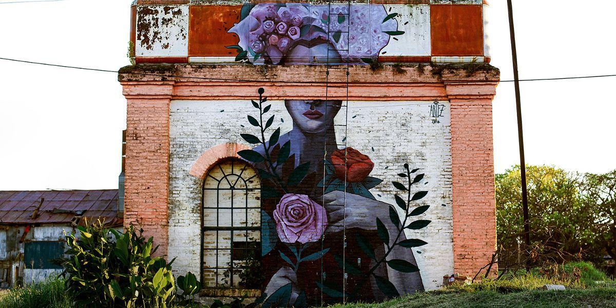 Artez - Mujer de las flores - Campo em Blanco project, Armstrong, Argentina, 2016