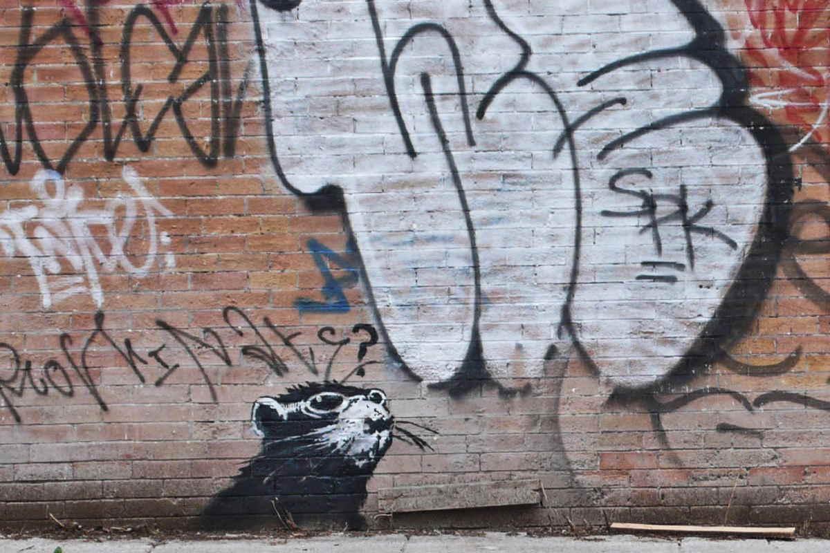 Banksy - Spadina  Rat, 185 Spadina Avenue, Toronto 2010