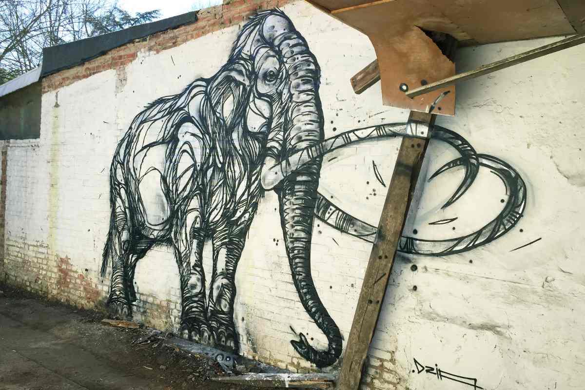DZIA - Chrome Mammoth - Leuven, Belgium - 2015
