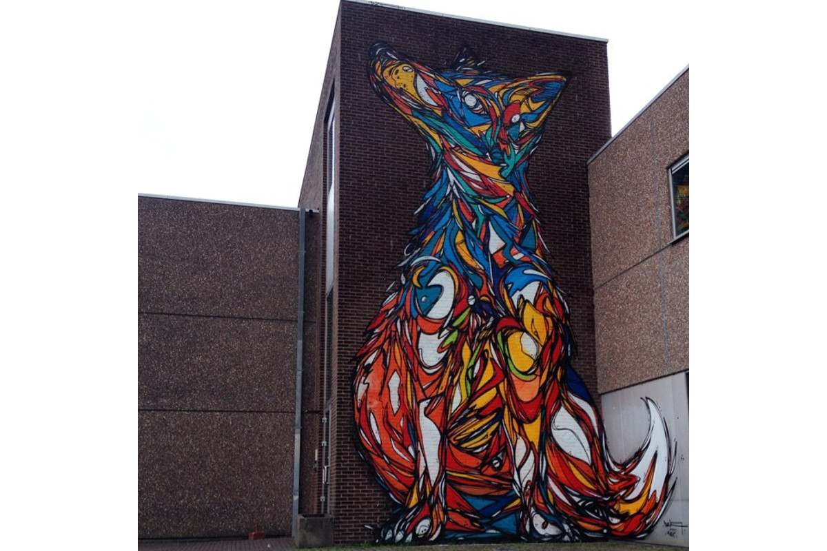 DZIA - Fox in Lier - Lier, Belgium - 2014