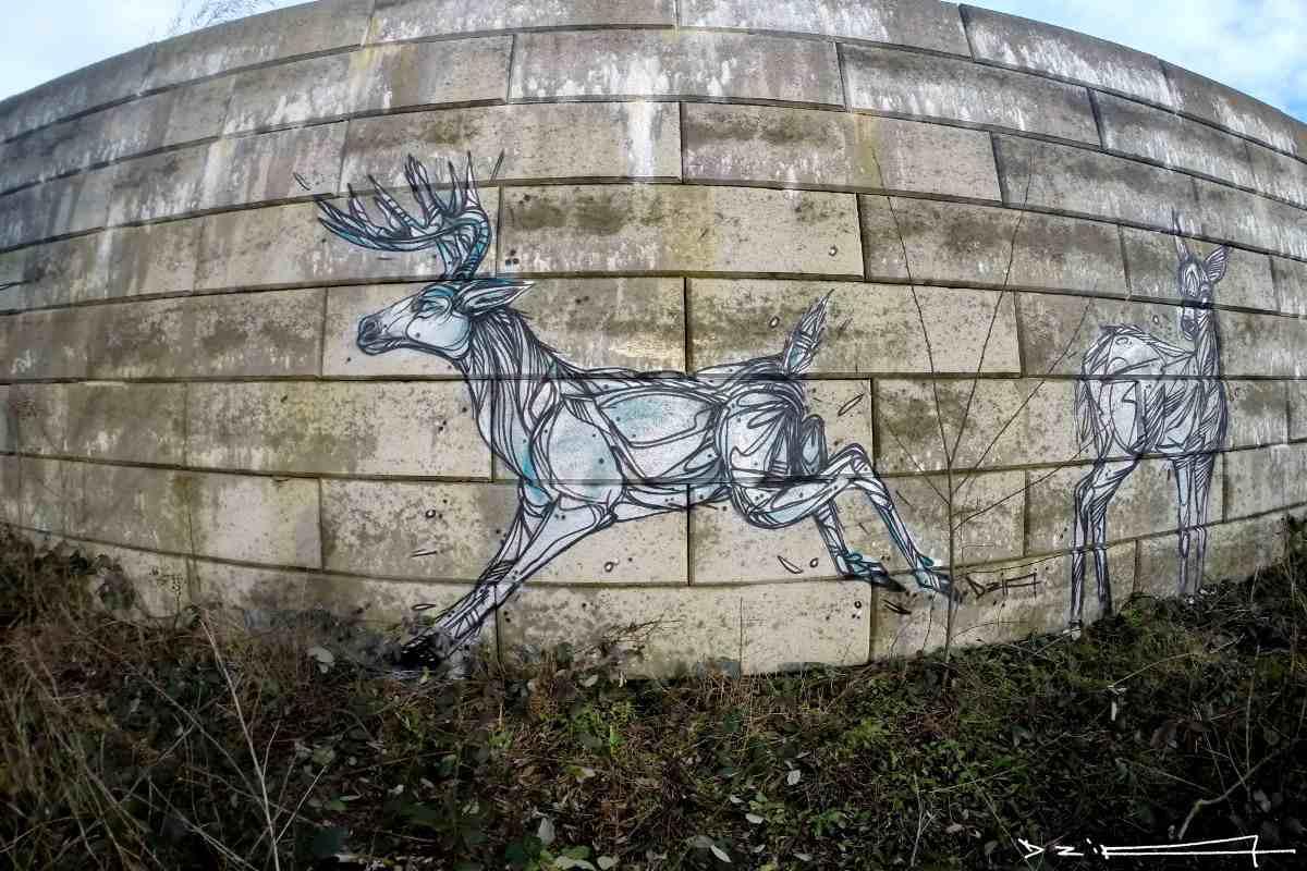 DZIA - Offtrack Deer - Antwerp, Belgium - 2015