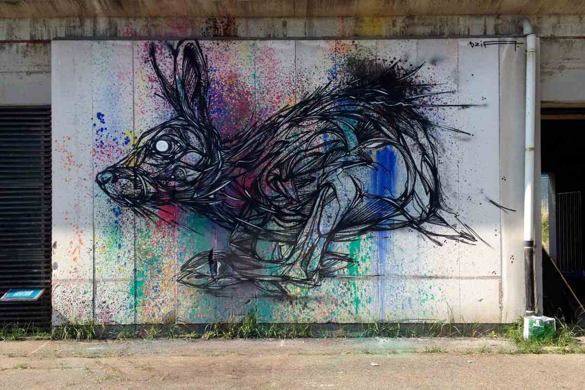 DZIA - Run Rabbit Run -  Antwerp, Belgium - 2014